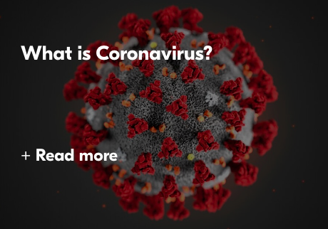 What is Coronavirus? Read More