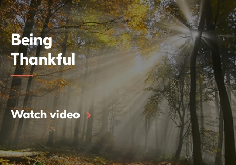 Being Thankful. Click to watch video.