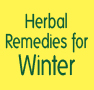 Herbal Remedies for Winter